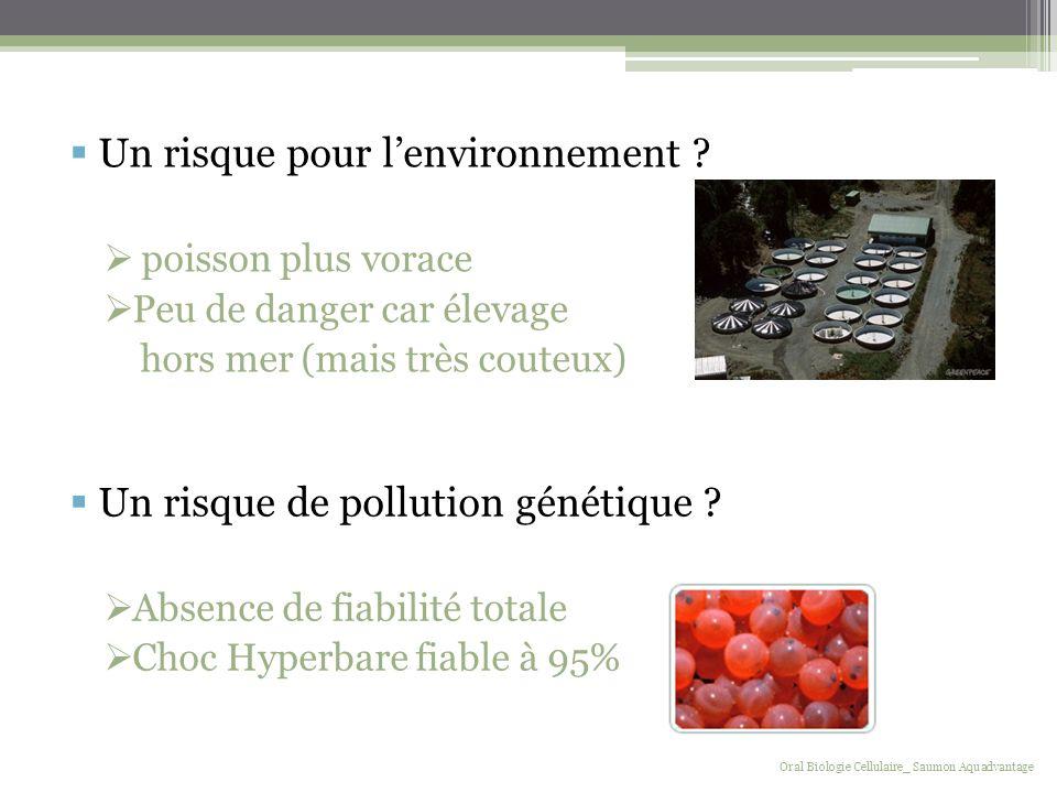 Un risque pour l'environnement