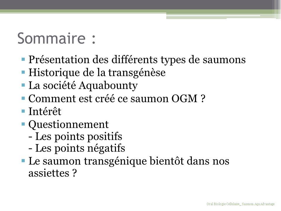 Sommaire : Présentation des différents types de saumons