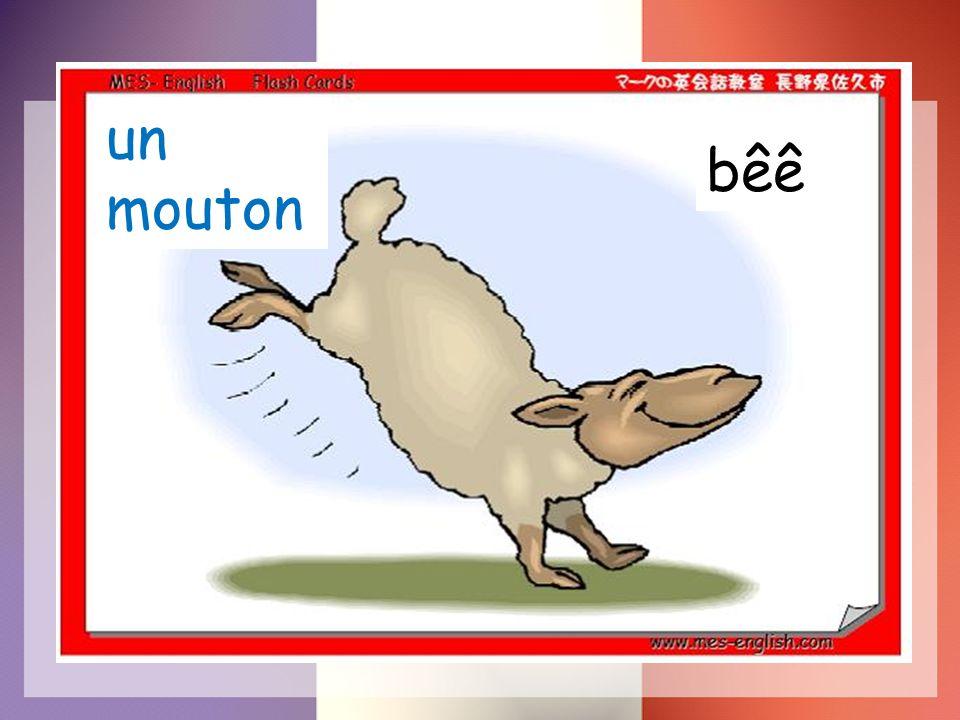 un mouton bêê