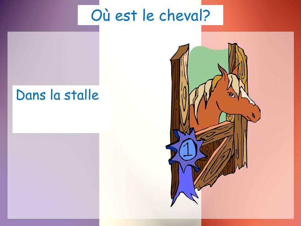 Où est le cheval Dans la stalle