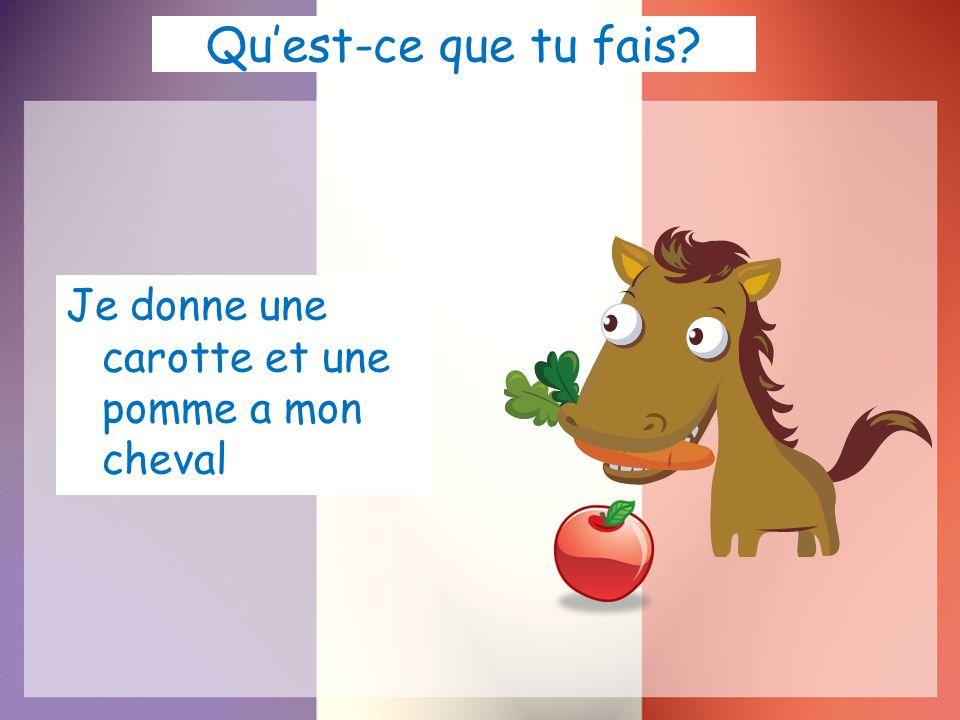 Qu'est-ce que tu fais Je donne une carotte et une pomme a mon cheval