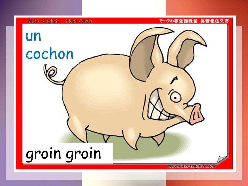un cochon groin groin