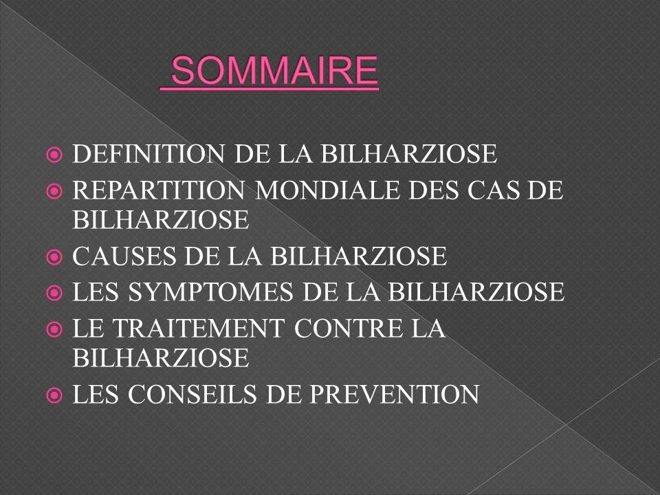 SOMMAIRE DEFINITION DE LA BILHARZIOSE