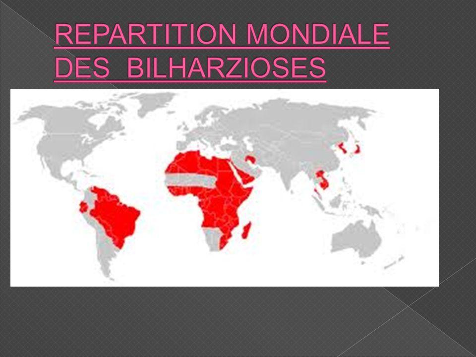 REPARTITION MONDIALE DES BILHARZIOSES