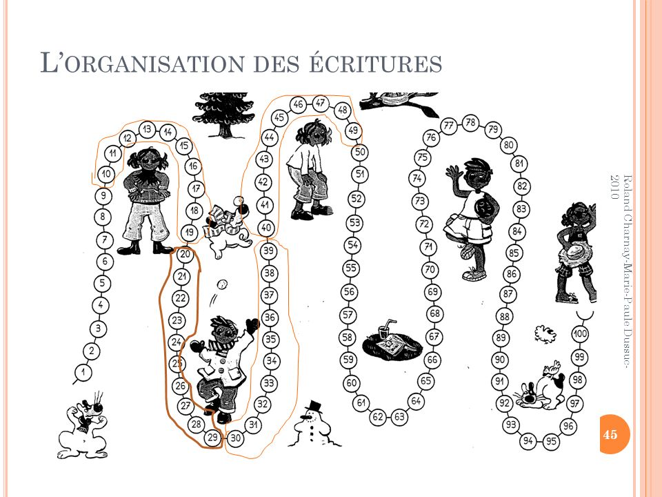 L'organisation des écritures
