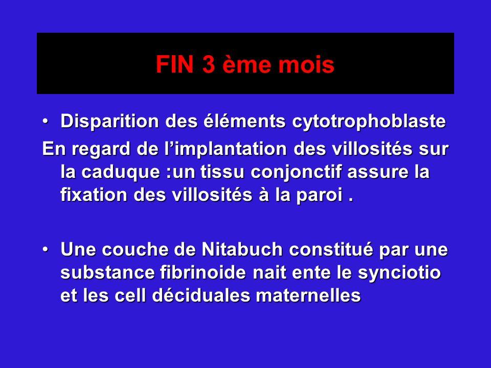 FIN 3 ème mois Disparition des éléments cytotrophoblaste