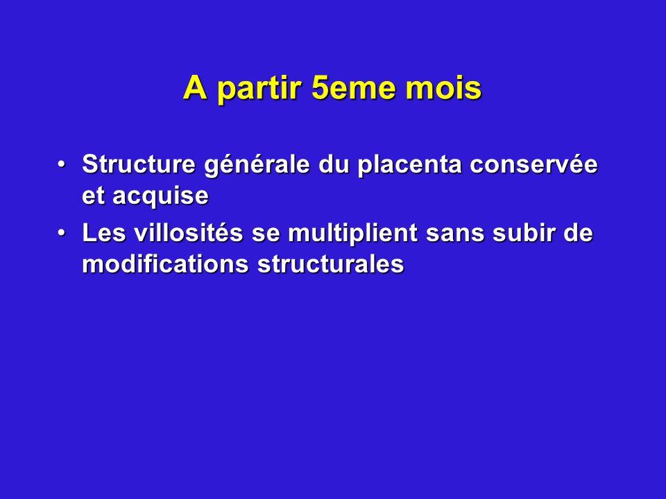 A partir 5eme mois Structure générale du placenta conservée et acquise