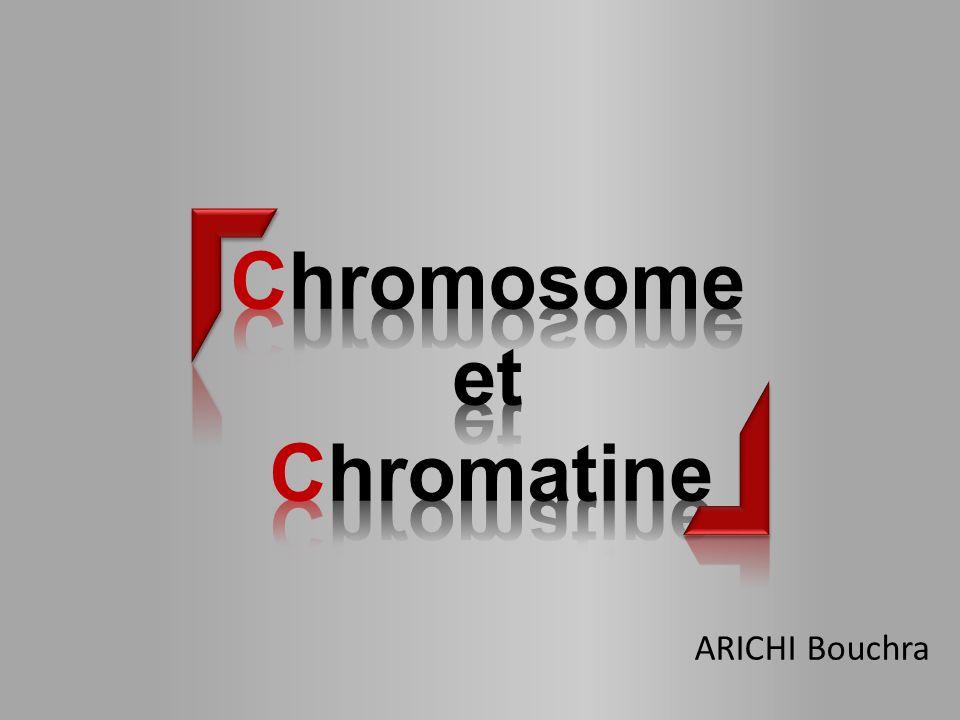 Chromosome et Chromatine ARICHI Bouchra