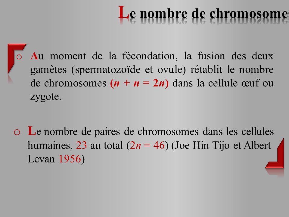 Le nombre de chromosomes