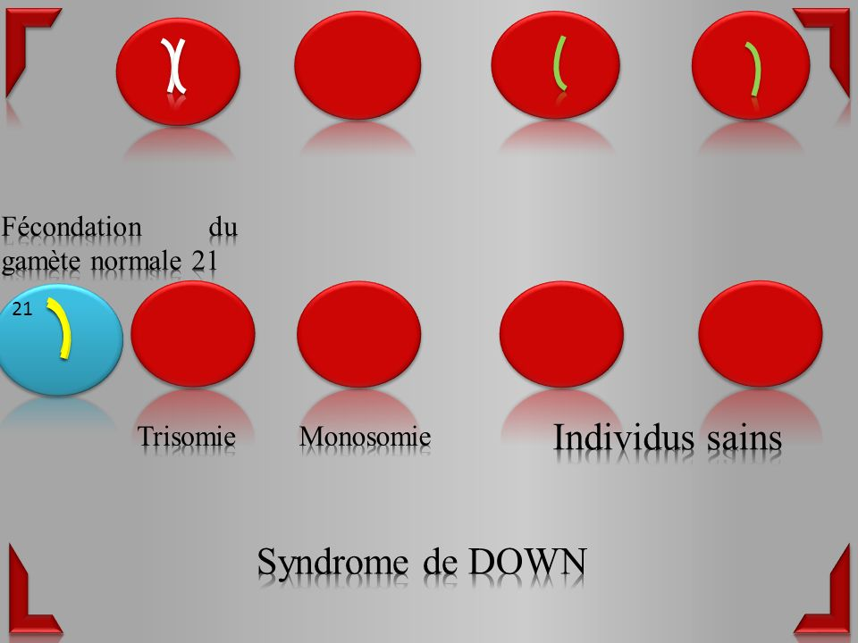 Individus sains Syndrome de DOWN Fécondation du gamète normale 21