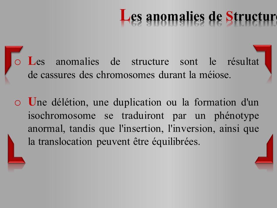 Les anomalies de Structure