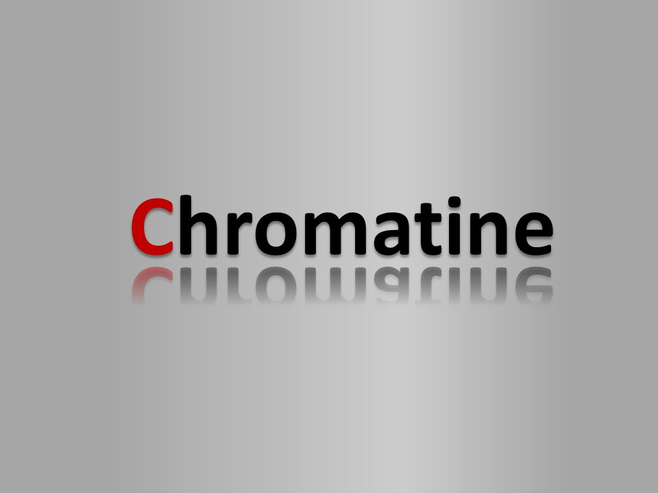 Chromatine