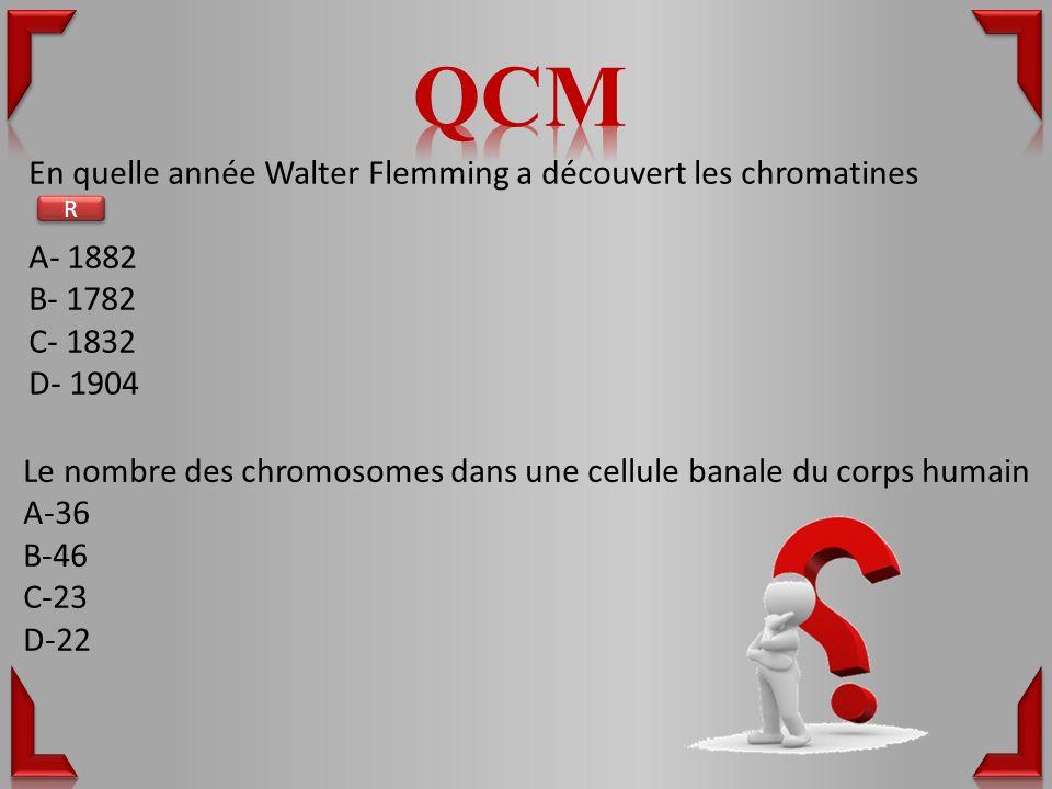QCM En quelle année Walter Flemming a découvert les chromatines