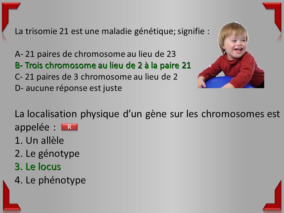 La localisation physique d'un gène sur les chromosomes est appelée :