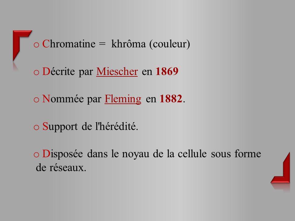 Chromatine = khrôma (couleur)