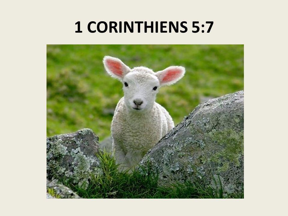 1 CORINTHIENS 5:7