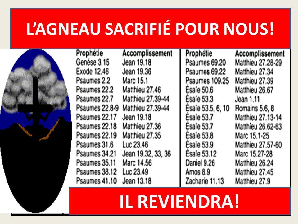 L'AGNEAU SACRIFIÉ POUR NOUS!