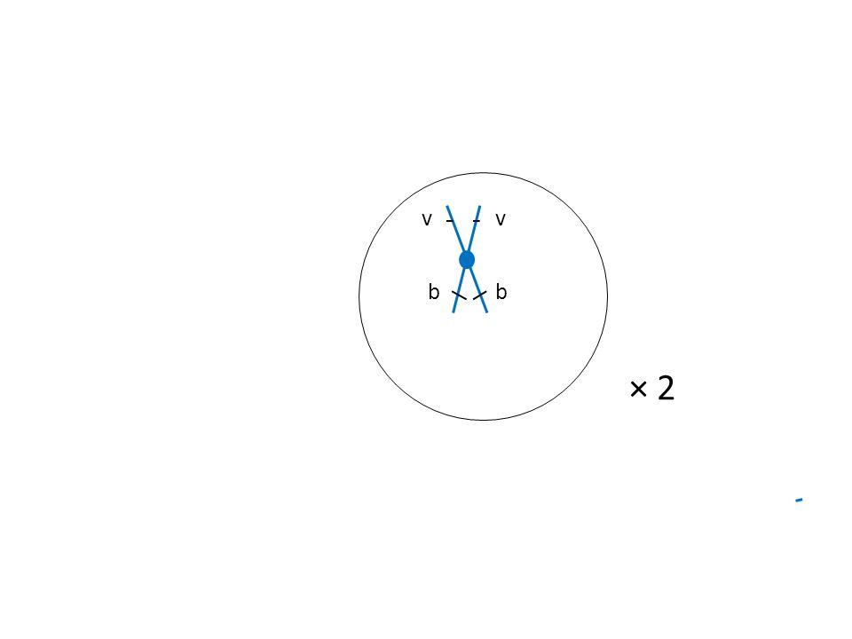 v b × 2