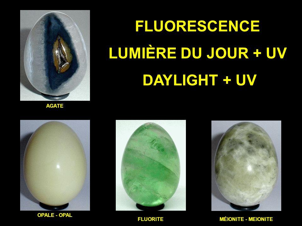 FLUORESCENCE LUMIÈRE DU JOUR + UV DAYLIGHT + UV