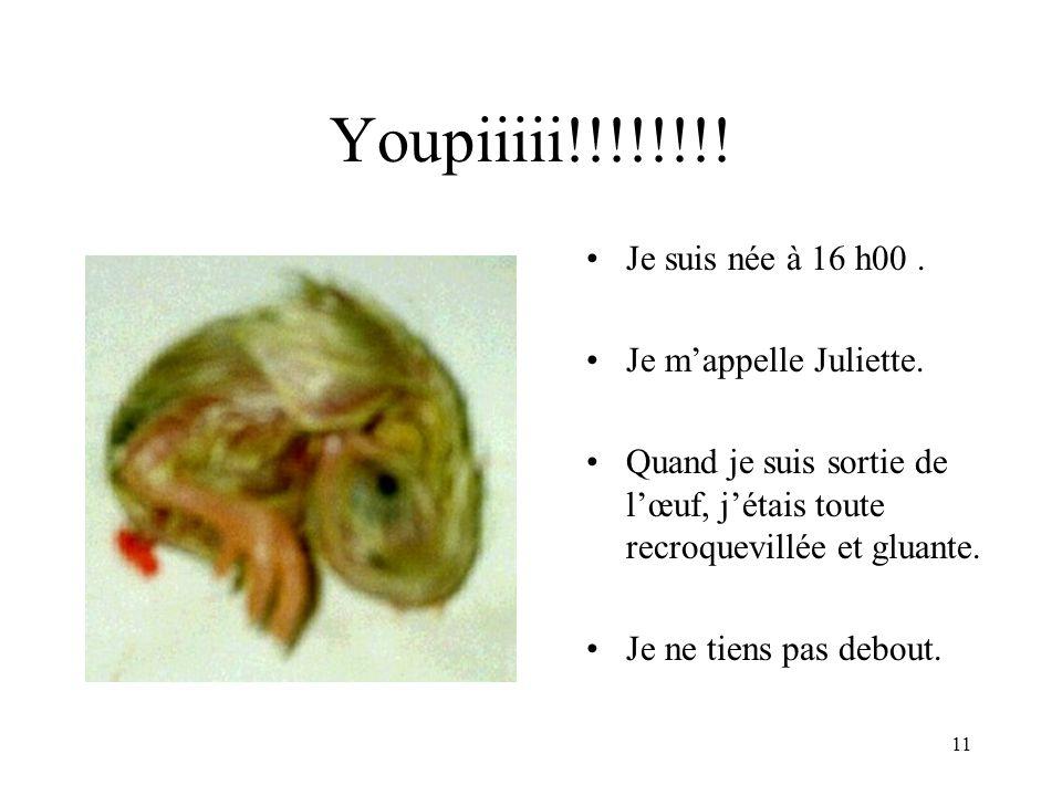 Youpiiiii!!!!!!!! Je suis née à 16 h00 . Je m'appelle Juliette.