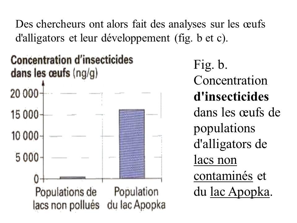 Des chercheurs ont alors fait des analyses sur les œufs d alligators et leur développement (fig. b et c).
