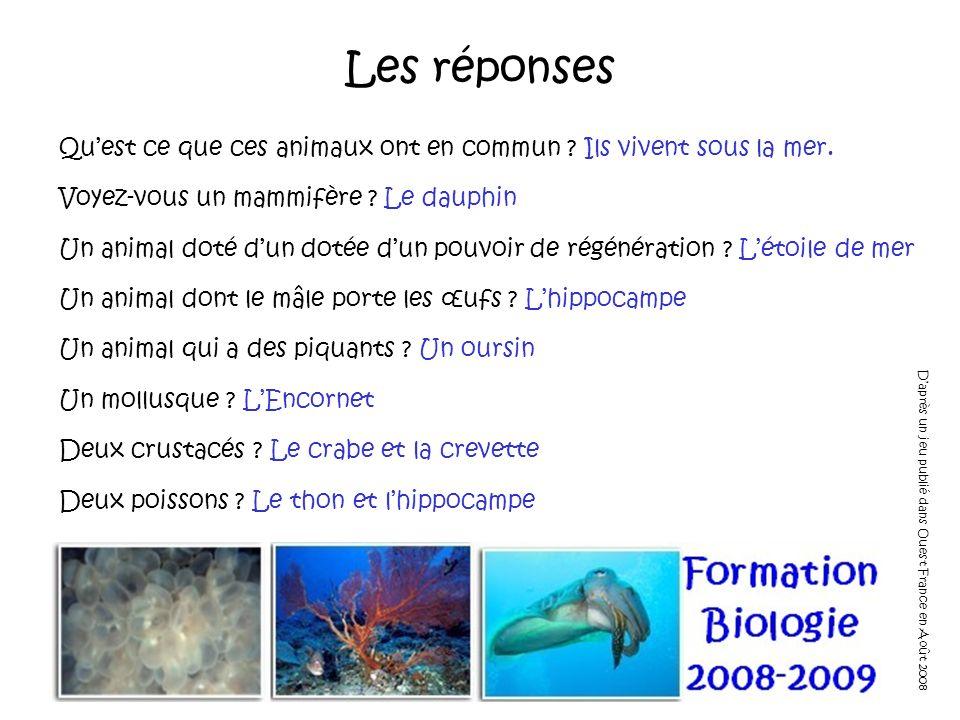 Les réponses Qu'est ce que ces animaux ont en commun Ils vivent sous la mer. Voyez-vous un mammifère Le dauphin.