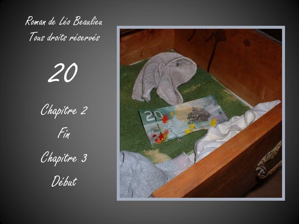 Roman de Léo Beaulieu Tous droits réservés