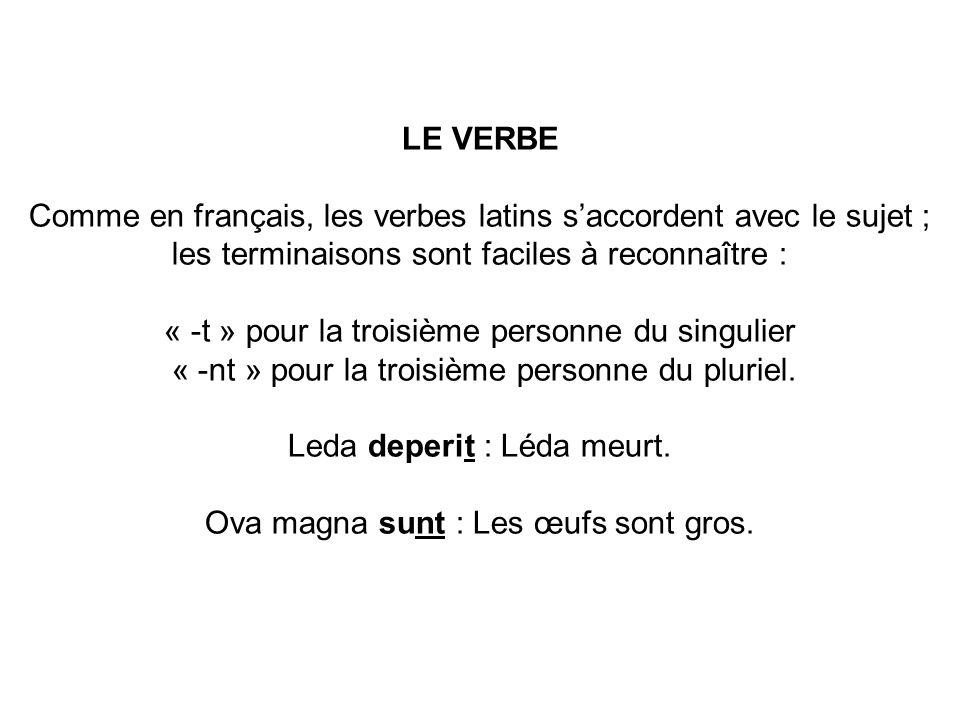 LE VERBE Comme en français, les verbes latins s'accordent avec le sujet ; les terminaisons sont faciles à reconnaître : « -t » pour la troisième personne du singulier « -nt » pour la troisième personne du pluriel.