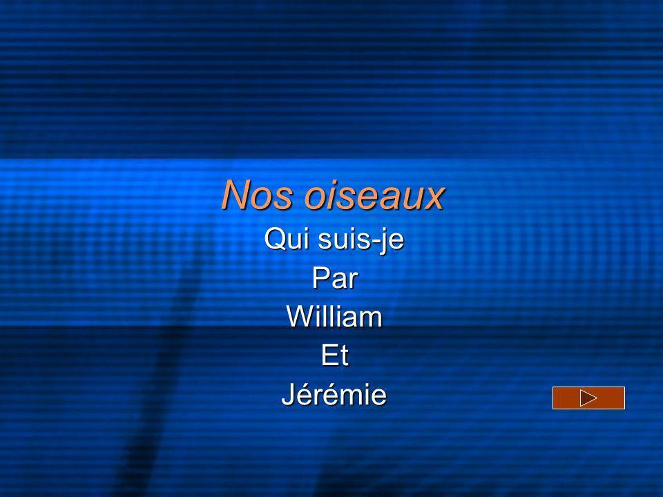 Qui suis-je Par William Et Jérémie
