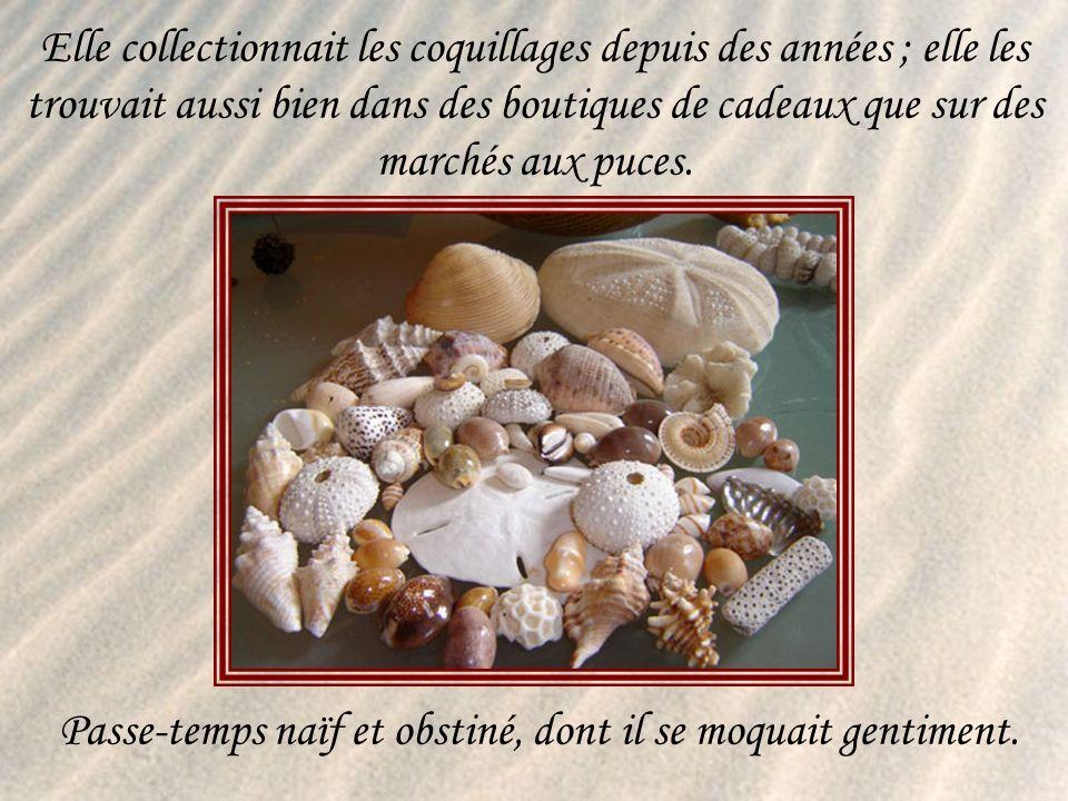 Elle collectionnait les coquillages depuis des années ; elle les trouvait aussi bien dans des boutiques de cadeaux que sur des marchés aux puces.