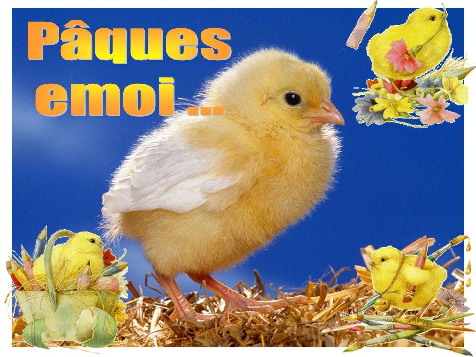 Pâques emoi ...