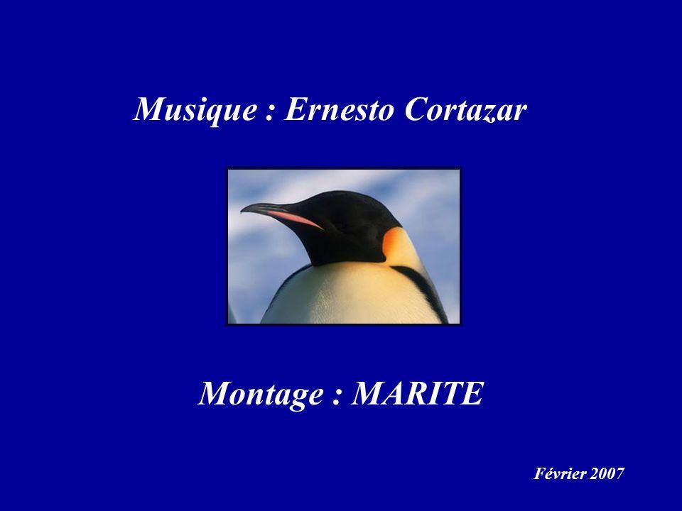 Musique : Ernesto Cortazar