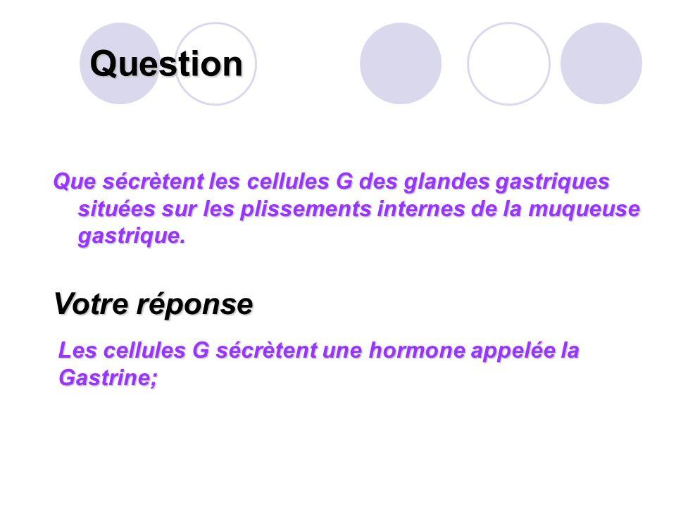 Question Votre réponse