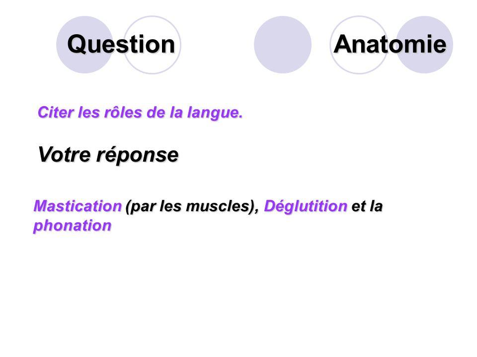 Question Anatomie Votre réponse Citer les rôles de la langue.