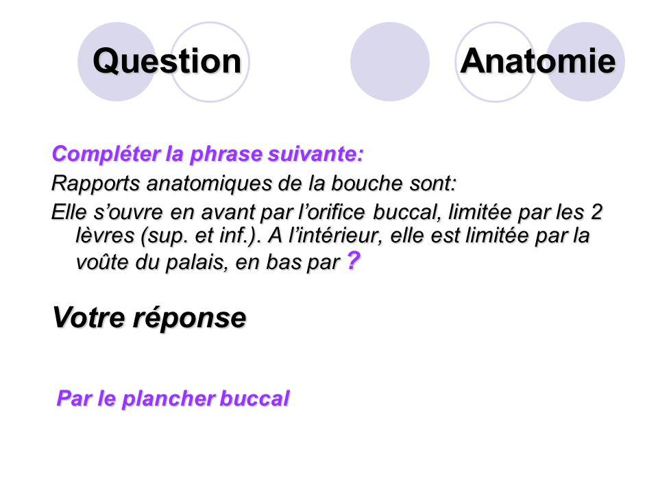 Question Anatomie Votre réponse Compléter la phrase suivante: