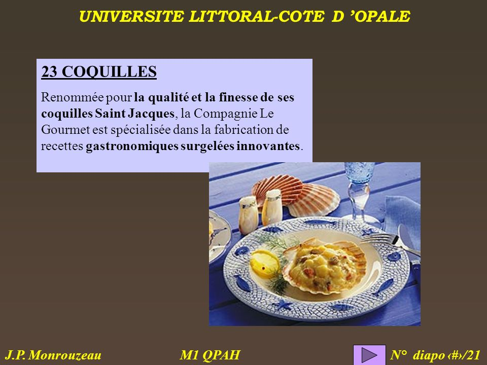 23 COQUILLES