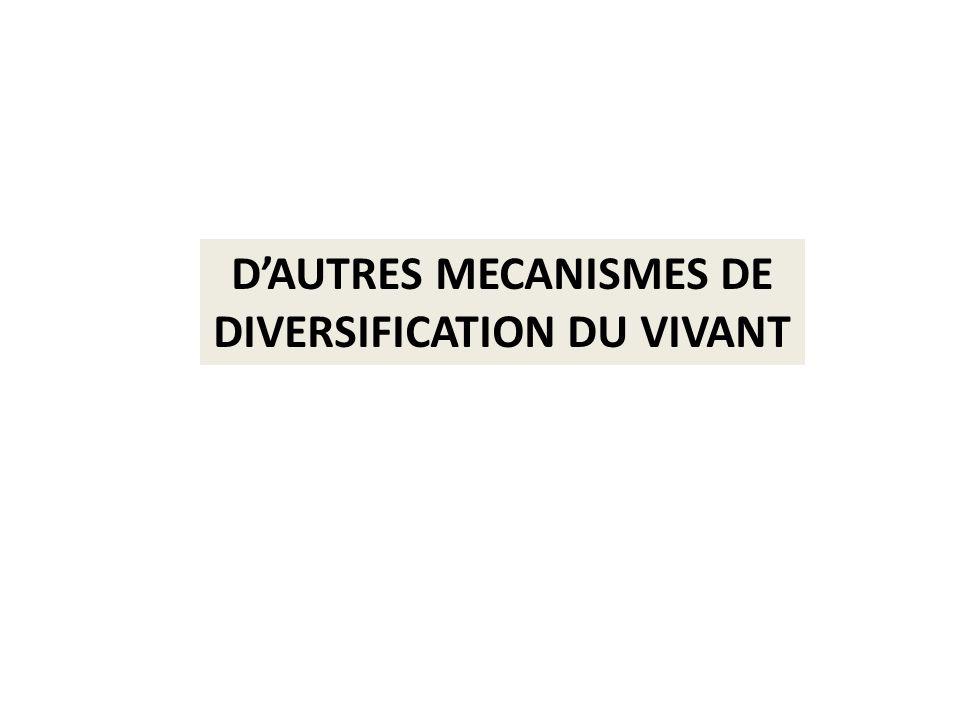 D'AUTRES MECANISMES DE DIVERSIFICATION DU VIVANT