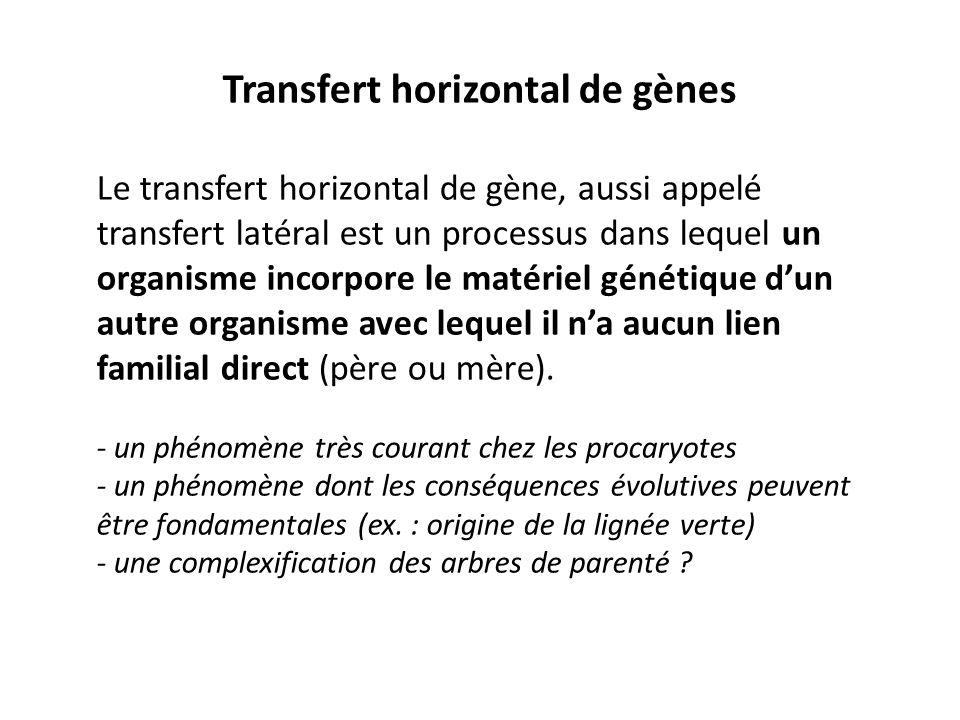 Transfert horizontal de gènes
