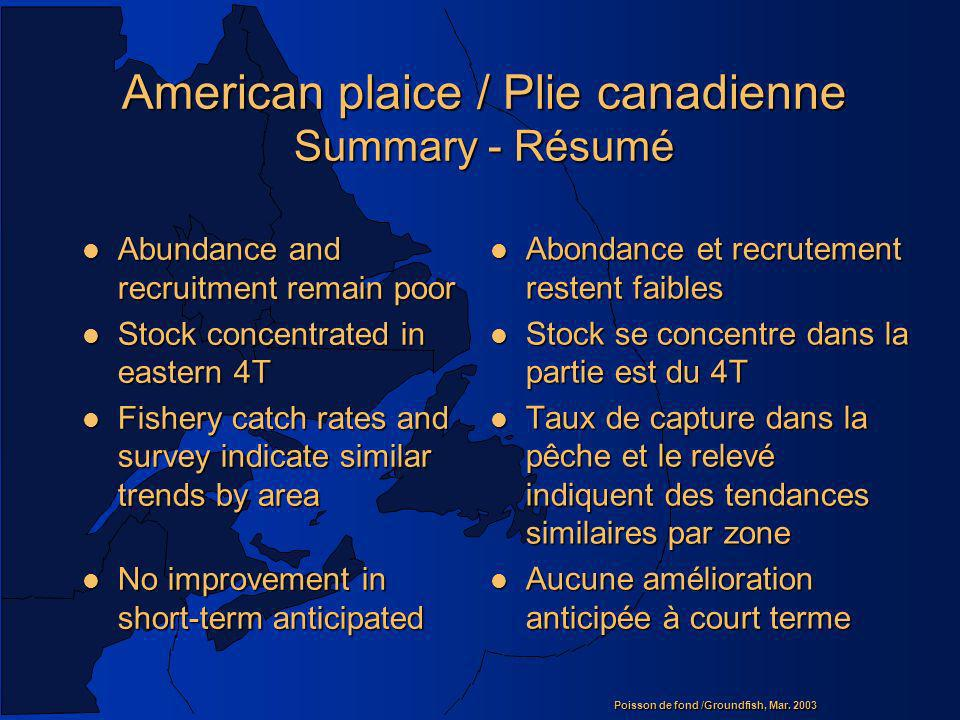 American plaice / Plie canadienne Summary - Résumé