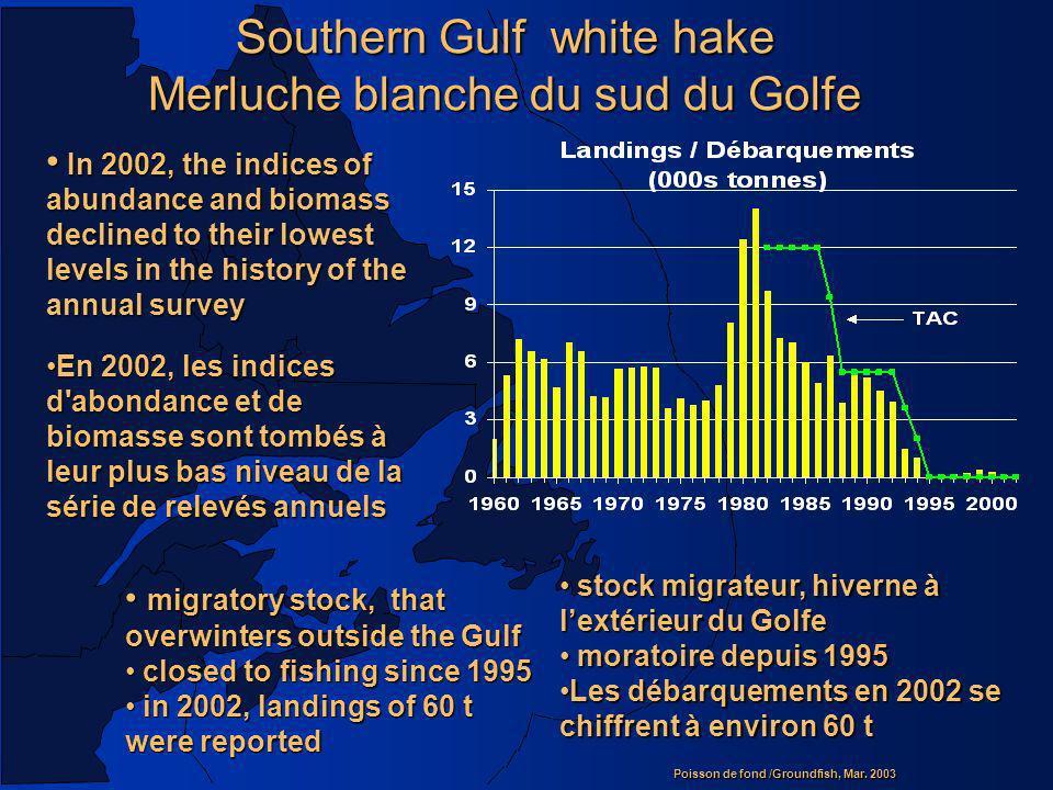 Southern Gulf white hake Merluche blanche du sud du Golfe