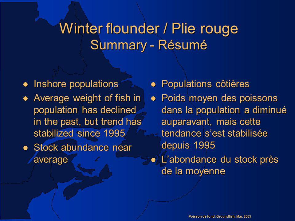 Winter flounder / Plie rouge Summary - Résumé