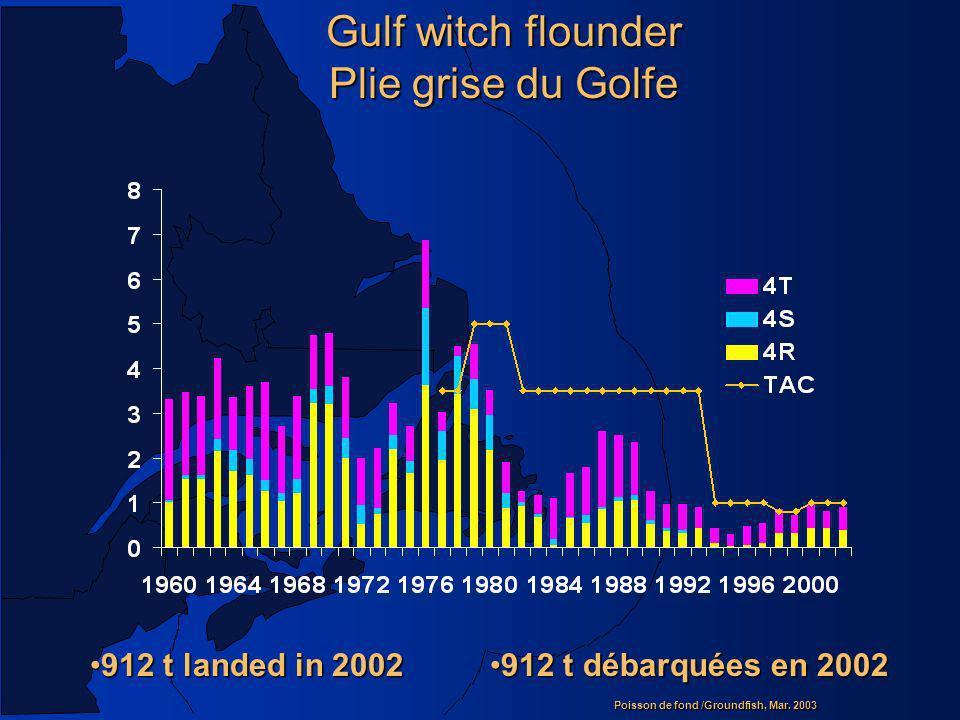 Gulf witch flounder Plie grise du Golfe 912 t landed in 2002
