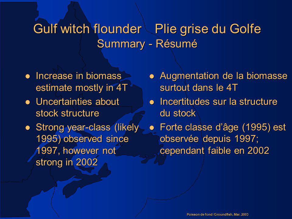 Gulf witch flounder Plie grise du Golfe Summary - Résumé