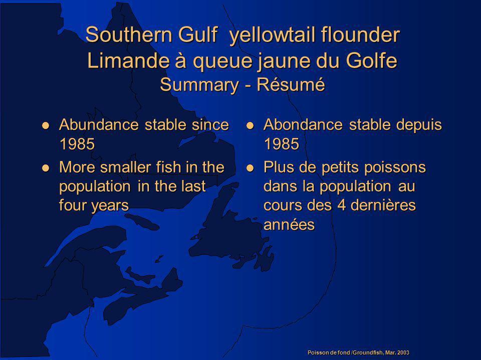 Southern Gulf yellowtail flounder Limande à queue jaune du Golfe Summary - Résumé