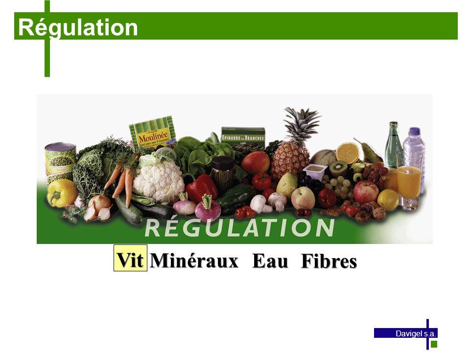 Régulation Vit Minéraux Eau Fibres Davigel s.a.