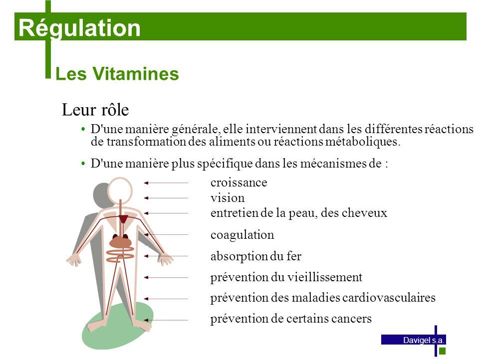 Régulation Les Vitamines Leur rôle