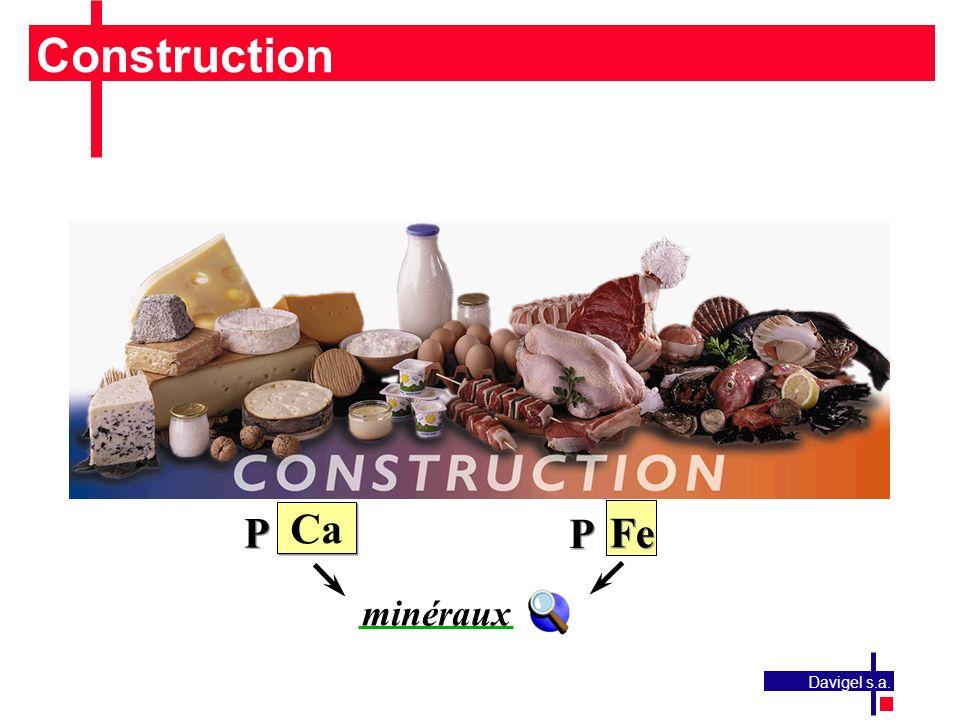 Construction P Ca P Fe minéraux Davigel s.a.
