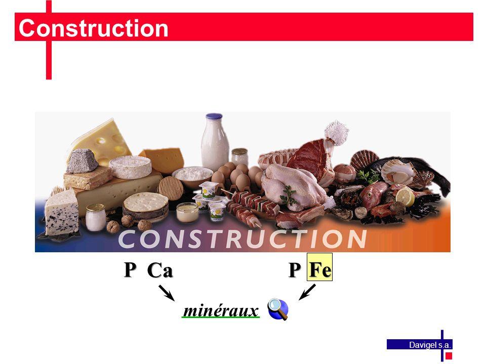 Construction P Ca Fe minéraux Davigel s.a.