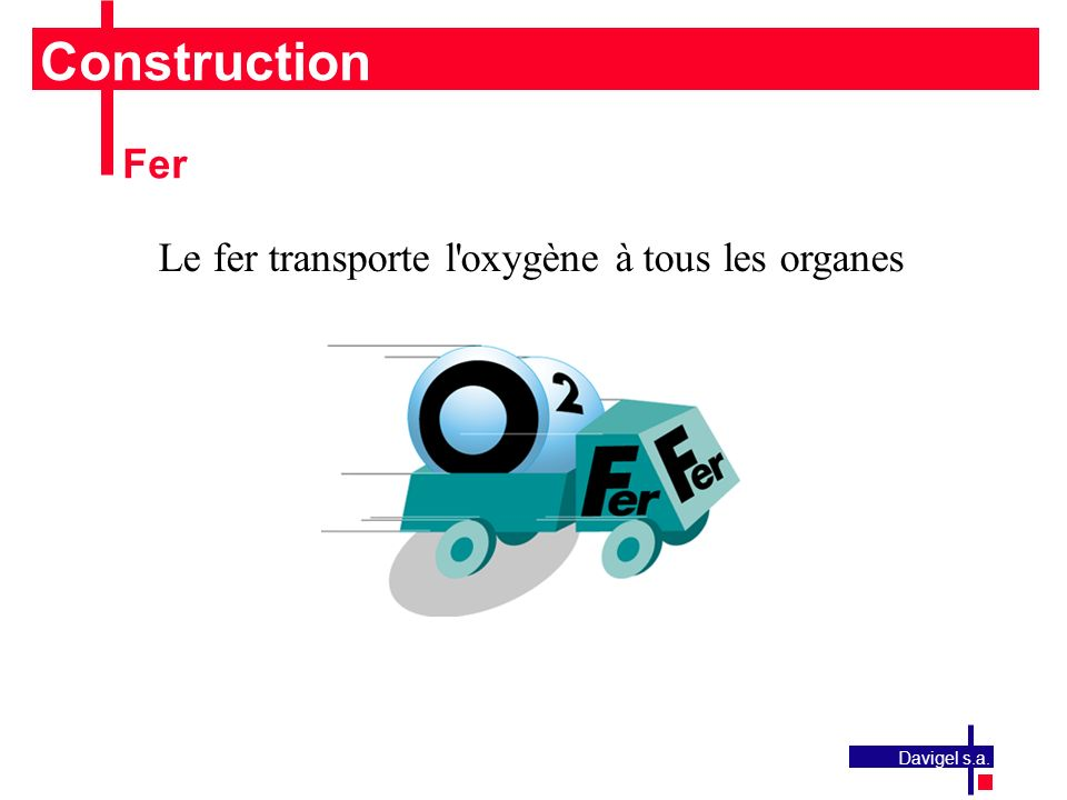 Construction Fer Le fer transporte l oxygène à tous les organes