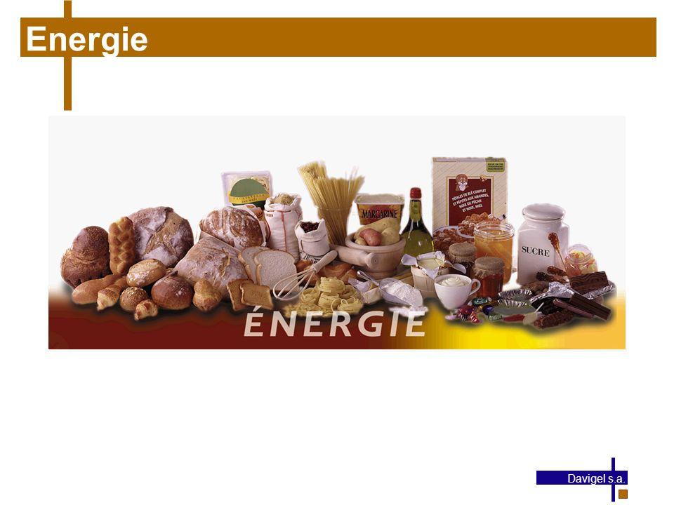 Energie Davigel s.a.